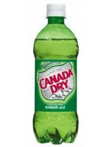 Canada Dry Ginger Ale 20 Fl Oz